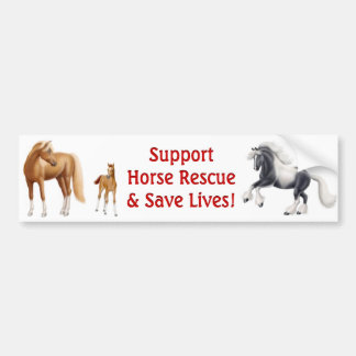 Support Horse Rescue Bumper Sticker
