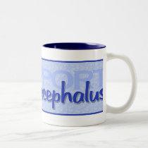 """Support Hydrocephalus"" Mug"