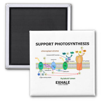 Support Photosynthesis Exhale (Biochemistry Humor) 2 Inch Square Magnet