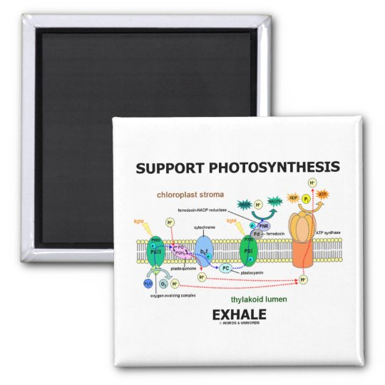 Support Photosynthesis Exhale (Biochemistry Humor) Magnet