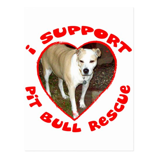 Support Pit Bull Rescue Postcard