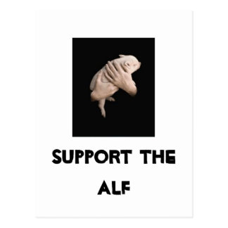 Support the ALF Postcard