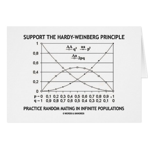 Support The Hardy-Weinberg Principle Practice Cards