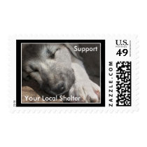 Support You Local Animal Shelter Postage