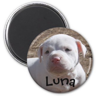 Support Your Local Shelter 2 Inch Round Magnet