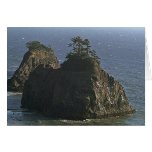 Supporting Life In The Middle Of Nowhere Greeting Card
