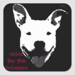Supporting Pit Bulls Stickers