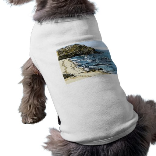 Sur grande, CA Ropa De Mascota