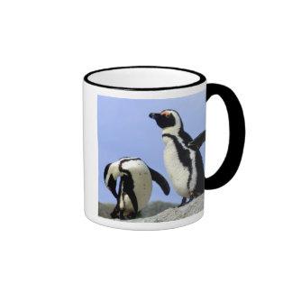 Suráfrica, ciudad de Simons. Pingüinos de Jackass Taza De Dos Colores
