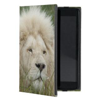 Suráfrica, Londres del este, Inkwenkwezi privado iPad Mini Carcasas