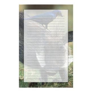 Suráfrica, Pilanesburg GR, Warthog Personalized Stationery