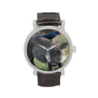 Suráfrica, Pilanesburg GR, Warthog Relojes De Pulsera