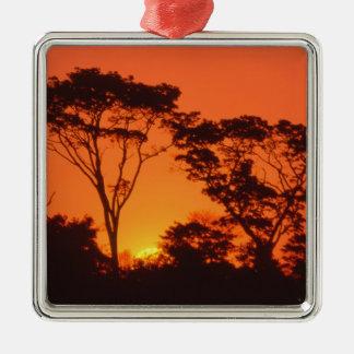 Suráfrica.  Puesta del sol africana Adorno Navideño Cuadrado De Metal