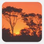 Suráfrica.  Puesta del sol africana Calcomanías Cuadradas
