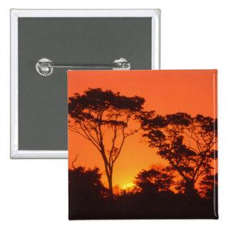Suráfrica.  Puesta del sol africana Pins
