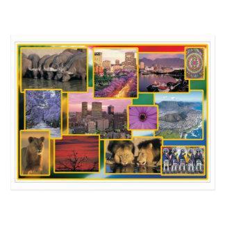 Suráfrica soleada postales