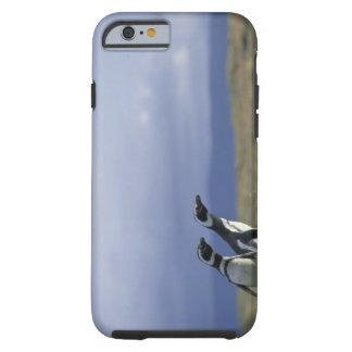 Suramérica, Chile, Patagonia, Magellanes, 2 Funda De iPhone 6 Tough