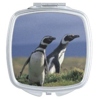 Suramérica, Chile, Patagonia, Magellanes, 2 Espejo Compacto