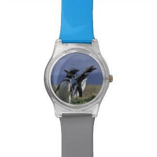 Suramérica, Chile, Patagonia, Magellanes, 2 Reloj