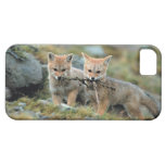 Suramérica, Chile, Torres del Paine National iPhone 5 Case-Mate Protector