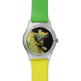 Suramérica, Ecuador, el Amazonas. Rana arbórea Relojes De Pulsera
