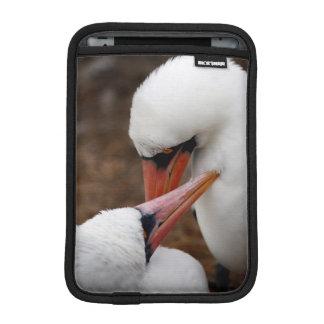 Suramérica, Ecuador, islas de las Islas Galápagos. Funda iPad Mini
