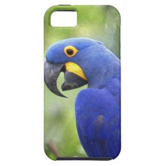 Suramérica, el Brasil, Pantanal. En peligro Funda Para iPhone SE/5/5s