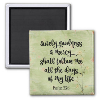 Surely Goodness and Mercy Bible Verse Psalms Magnet