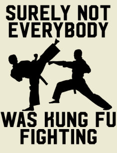 Kung Fu Gifts on Zazzle
