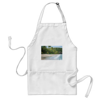 Surf breaking on a sandy beach adult apron
