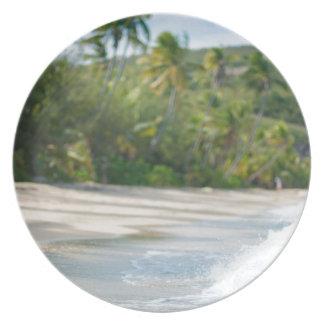 Surf breaking on a sandy beach plate