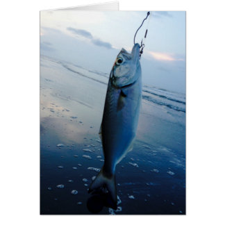 Surf Fishing Bait Note Card