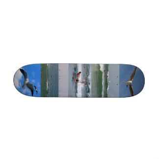 Surf Fly _Skateboard Skate Boards