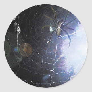 Surf the Web For Halloween Classic Round Sticker