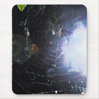 Surf the Web For Halloween Mouse Pad