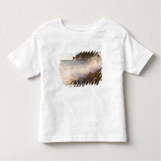 Surf washes over the cobblestones in Monument Toddler T-shirt