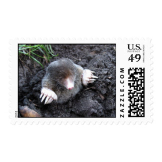 Surfacing Mole Postage