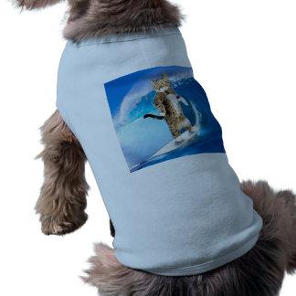 Surfcat