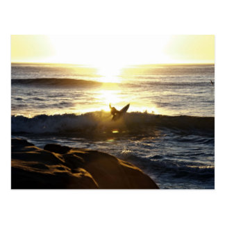 Surfer in San Diego Postcard