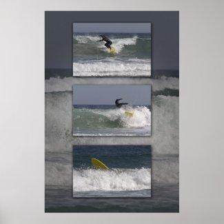 Surfer Triptych print