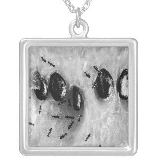 surfing ants square pendant necklace