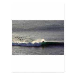 Surfing Bali perfect wave Postcard