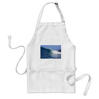 Surfing big waves on tropical island paradise aprons