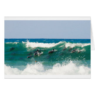 Surfing dolphins card
