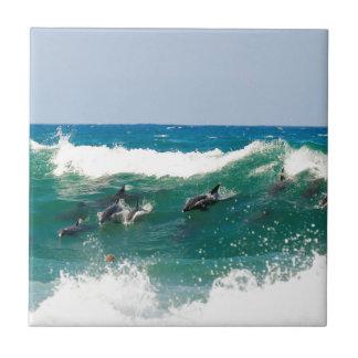 Surfing dolphins ceramic tile