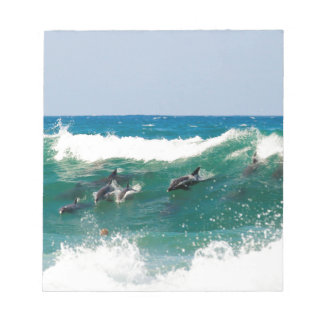 Surfing dolphins note pad