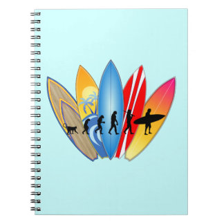 Surfing Evolution Notebook