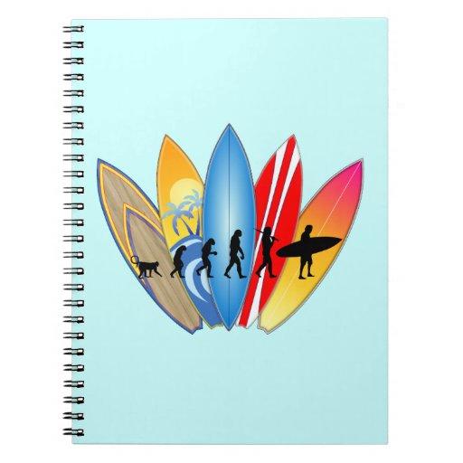 Surfing Evolution Notebook