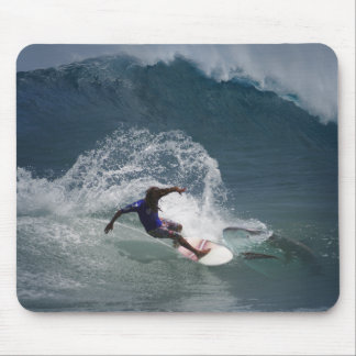 Surfing Ferinds Mouse Pad