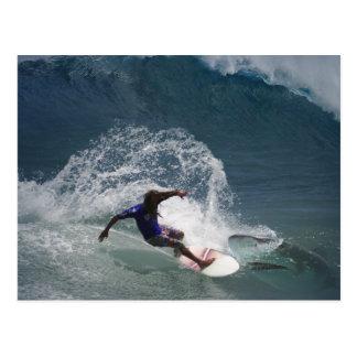 Surfing Ferinds Postcards